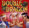Completed Double Dragon (NES)