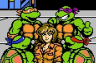 Teenage Mutant Ninja Turtles III - The Manhattan Project (NES)