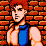 Completed Double Dragon III - The Sacred Stones (NES)