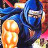 Completed Ninja Gaiden II - The Dark Sword of Chaos (NES)