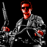 Completed Terminator 2: Judgment Day (NES)