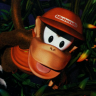 ~Hack~ Donkey Kong Country 2 - The Lost Levels (SNES)