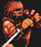 Completed Shadow of the Ninja (NES)