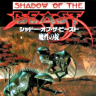 Shadow of the Beast: Mashō no Okite (Mega Drive)