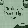 ~Homebrew~ Frank the Fruit Fly